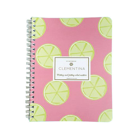 Pink Lemonade Mini Notebook
