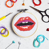 'Read my Lips' Mini Cross Stitch Kit