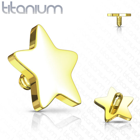 Flat 4mm Star Dermal Top Titanium IP over 316L Surgical Steel Internally Threaded