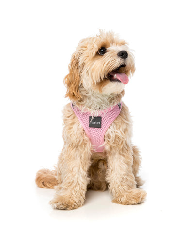 Fuzzyard Cotton Candy Pink Step In Harness