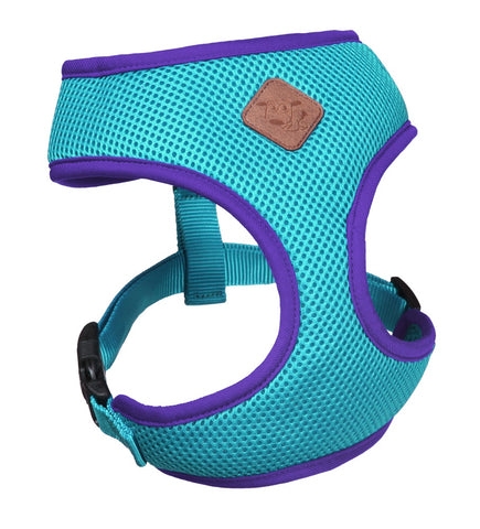 Kazoo Active Harness Aqua/Purple
