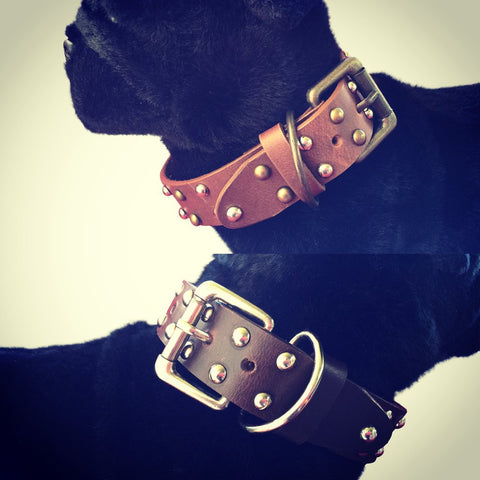 Studded Design Dog Collar