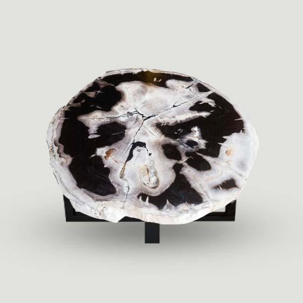Petrified Wood Slab With Custom Made Base PF-1108  by Aire Furniture
