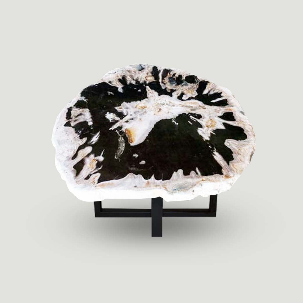 Petrified Wood Slab Use in Coffee Table | End Table PF-1114 by Aire Furniture
