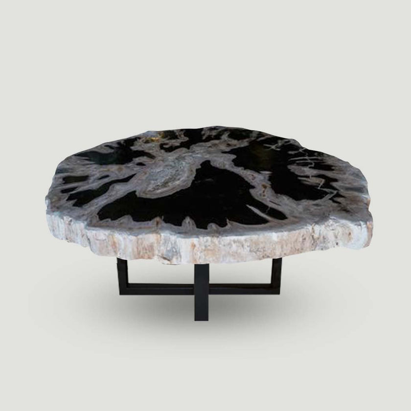 Petrified Wood Slab With Custom Made Base PF-1106  by Aire Furniture