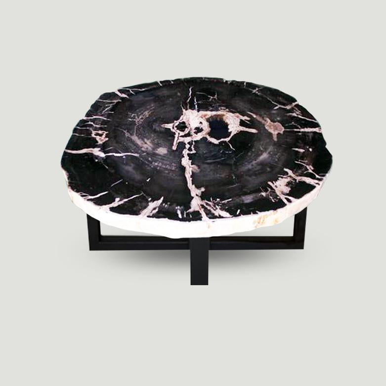 Petrified Wood Slab Coffee Table - 32
