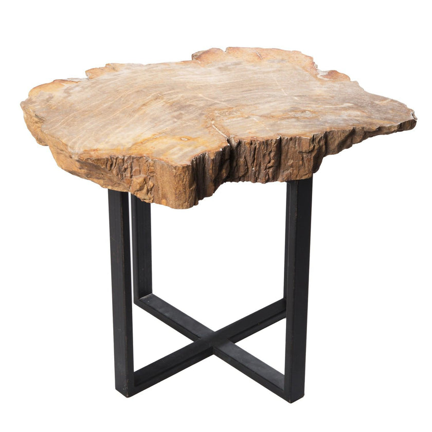 petrified wood side tables – aire furniture