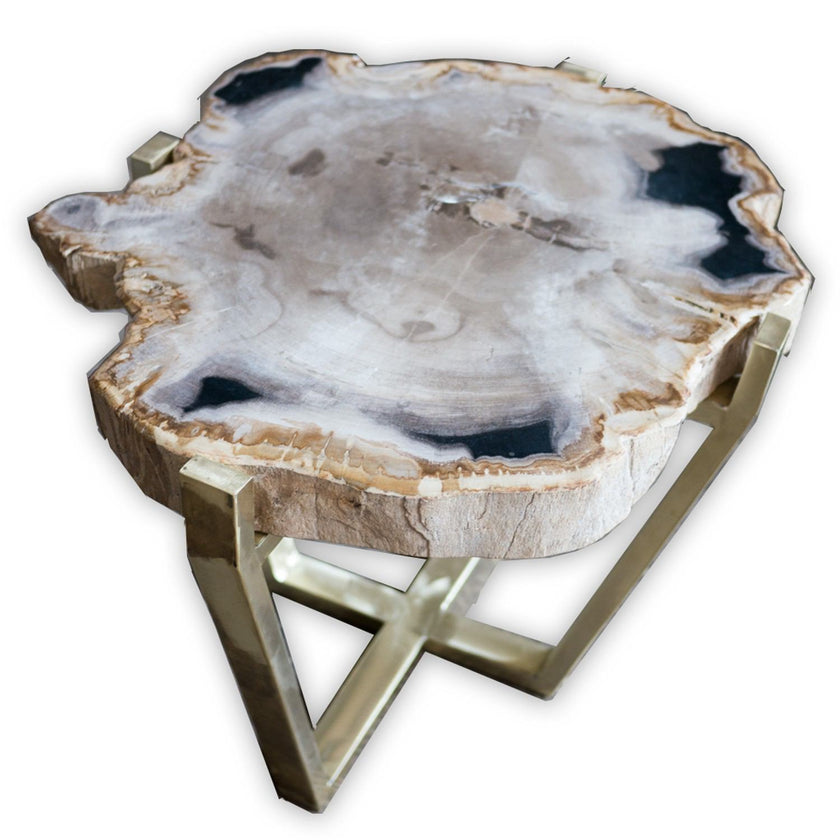 Petrified Wood Table PF-1060 by AIRE Furniture