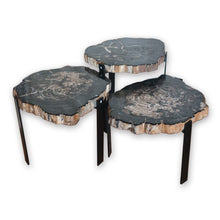 Petrified Wood Side Tables PF-1080 by AIRE Furniture