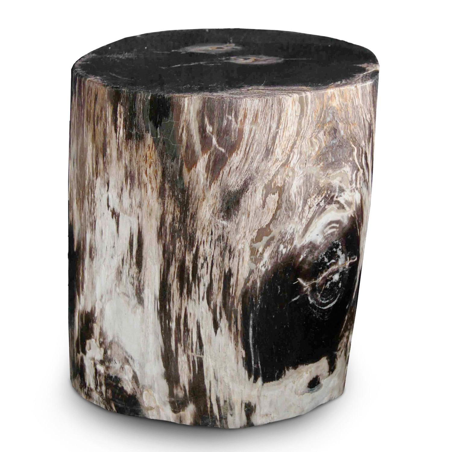 Petrified Wood Stool PF-2025 by AIRE Furniture