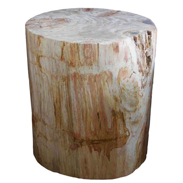 Petrified Wood Log Stool PF-2026 by AIRE Furniture
