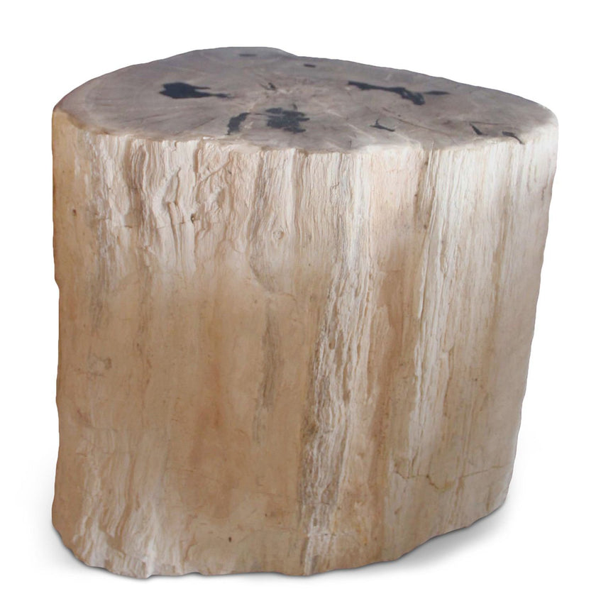 Petrified Wood Log Stool PF-2034 by AIRE Furniture