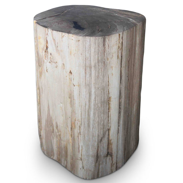 Petrified Wood Log Stool PF-2041 by AIRE Furniture