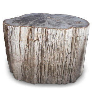 Petrified Wood Log Stool PF-2048 by AIRE Furniture