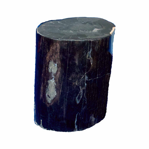 Petrified Wood Accent Stool-Ebony Black/ Cream Side Table by Aire