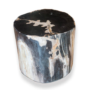NoLiTa Petrified Wood Stool PF-2066 by AIRE Furniture