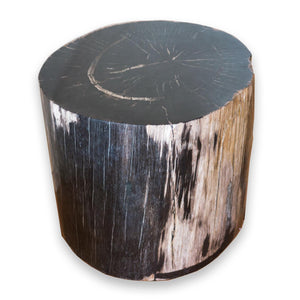 Petrified Wood Stool PF-2070 (1 of 2) by AIRE Furniture