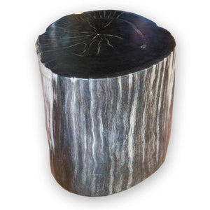 Petrified Wood Stool PF-2071 (2 of 2) by AIRE Furniture