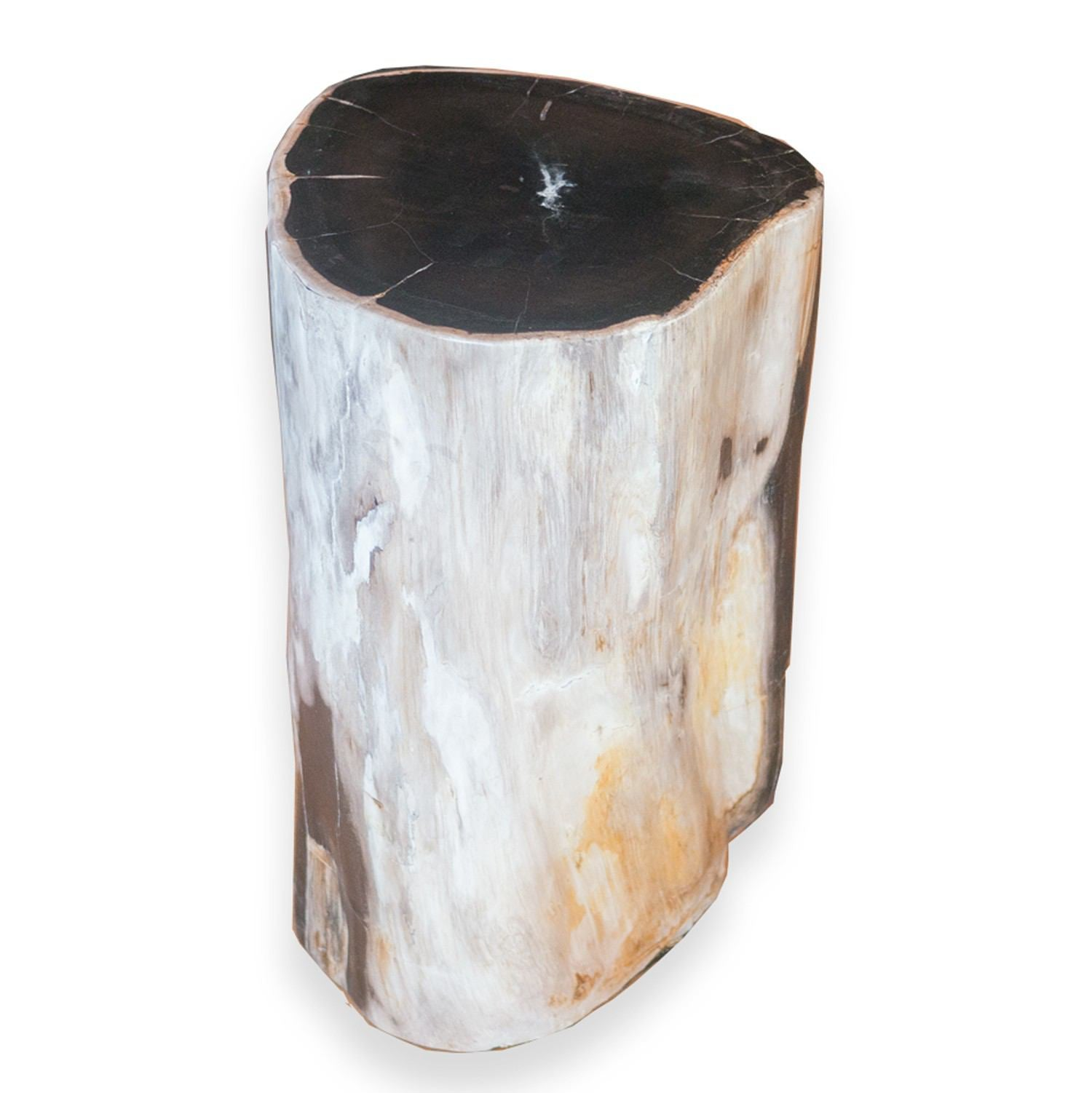 Petrified Wood Stool PF-2072 by AIRE Furniture