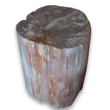 Petrified Wood Stool PF-2073 by AIRE Furniture