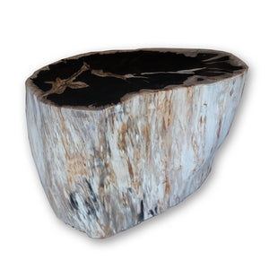 Petrified Wood Stool PF-2074 (1 of 2) by AIRE Furniture