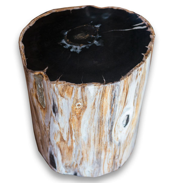 Petrified Wood Stool PF-2078 by AIRE Furniture