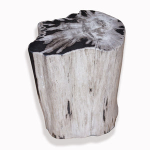 PF-2084 Petrified Wood Stool by AIRE Furniture