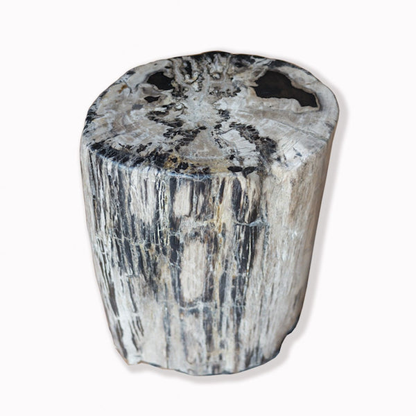 PF-2087 Petrified Wood Stool by AIRE Furniture