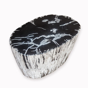 PF-2088 Petrified Wood Stool by AIRE Furniture