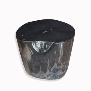 Remarkable Pf 2093 Petrified Wood Stool Andrewgaddart Wooden Chair Designs For Living Room Andrewgaddartcom