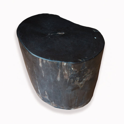 Petrified Wood Stool PF-2093