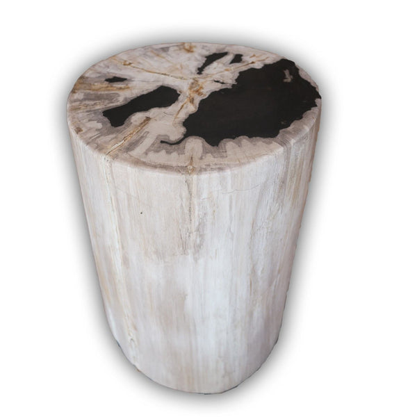 Petrified Wood Log Stool PF-2097 by AIRE Furniture