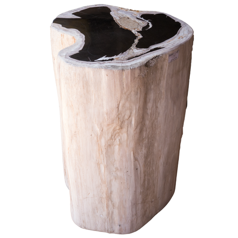 Petrified Wood Log Stool PF-2098