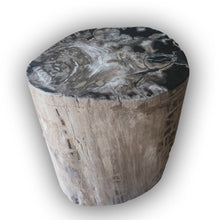 Petrified Wood Log Stool PF-2101 by AIRE Furniture