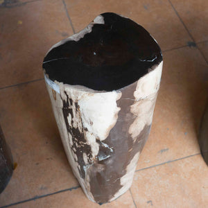 Petrified Wood Log Stool PF-2102