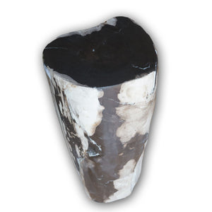 Petrified Wood Log Stool PF-2102 by AIRE Furniture