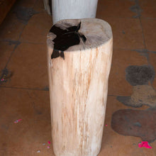 Petrified Wood Log Stool PF-2103