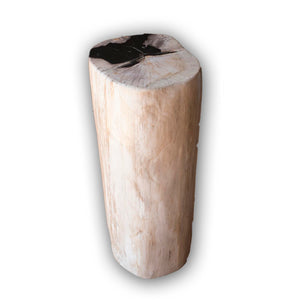 Petrified Wood Log Stool PF-2103 by AIRE Furniture