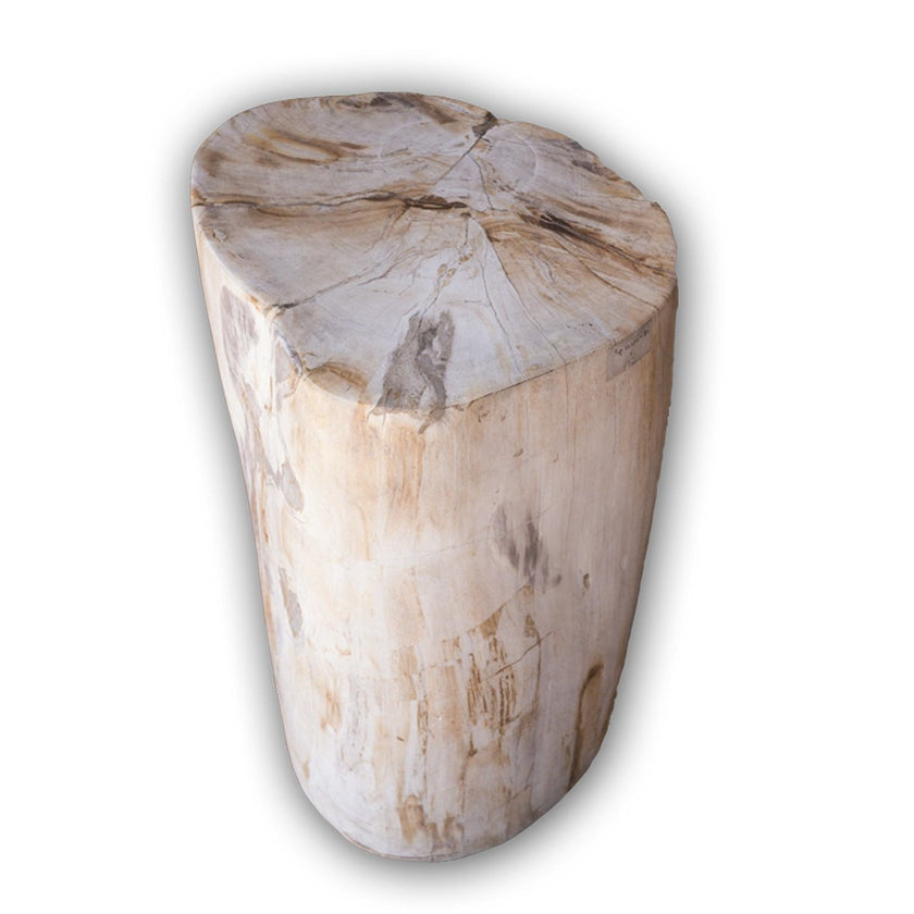 Petrified Wood Log Stool PF-2104 by AIRE Furniture
