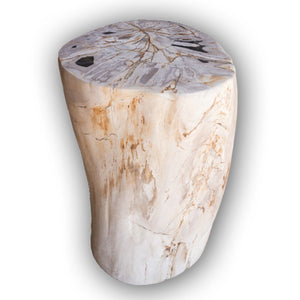 Petrified Wood Log Stool PF-2106 by AIRE Furniture