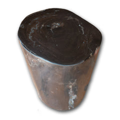 Petrified Wood Log Stool PF-2107