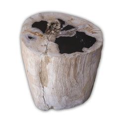 Petrified Wood Log Stool PF-2108 by AIRE Furniture