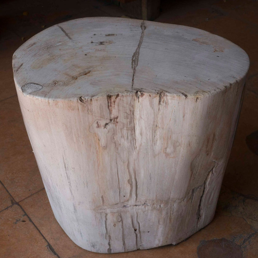 Petrified Wood Log Stool PF-2109