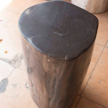 Petrified Wood Log Stool PF-2113
