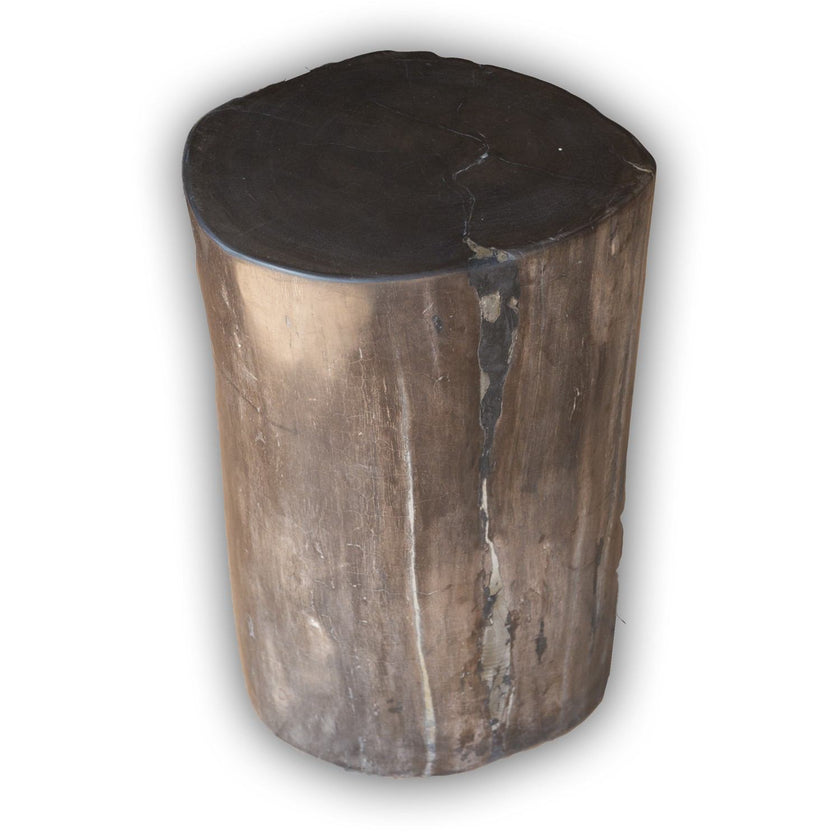 Petrified Wood Log Stool PF-2113 by AIRE Furniture