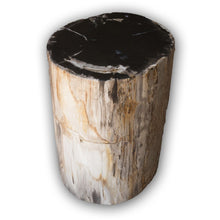 Petrified Wood Log Stool PF-2116 by AIRE Furniture