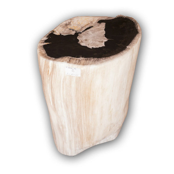 Petrified Wood Log Stool PF-2122 by AIRE Furniture