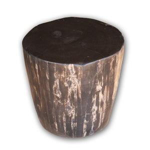 Petrified Wood Log Stool PF-2123 by AIRE Furniture