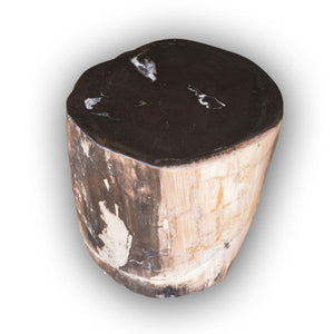 Petrified Wood Log Stool PF-2124 by AIRE Furniture