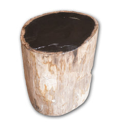 Petrified Wood Log Stool PF-2126 by AIRE Furniture